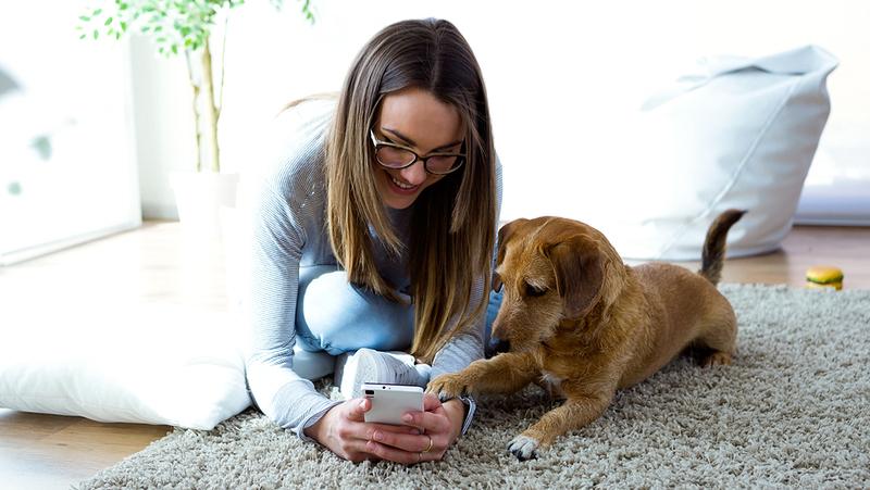 Junge Frau mit Hund in der neuen Wohnung.